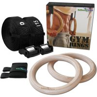 olympic_gym_rings_1